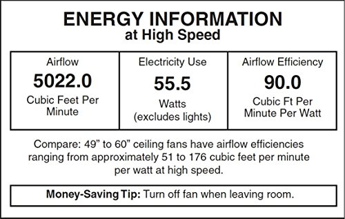 Honeywell Duvall 52-Inch Tropical Ceiling Fan, Five Wet Rated Wicker Blades, Indoor/Outdoor, White by Honeywell Ceiling Fans (Image #1)