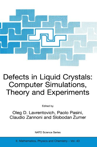 Defects in Liquid Crystals: Computer Simulations, Theory and Experiments (Nato Science Series II:)