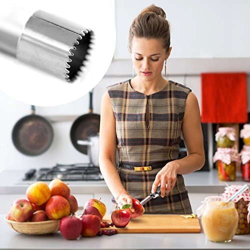 The 8 best apple corer for cupcakes