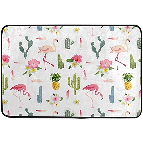 Pineapple Cacti and Flowers Chinese Red-Crowned Crane Grus Japonensis Welcome Doormat Door Mat Dog Placemat Machine Washable Rug Non Slip Mats Bathroom Kitchen Decor Area Rug 24 x16 Inch / 40 X 60cm]()