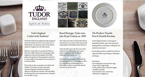 51SD%2BSNo1oL - Tudor 16-Piece Porcelain Dinnerware Set, Service for 4 - VICTORIA BLUE, 10 Designs Inside!