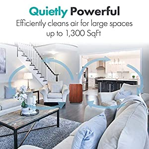 Alen BreatheSmart 75i Quiet Air Purifier with Laser Sensor for Large Spaces up to 1300 Sqft, Removes Allergens, Pollen, Dust, Dander, while Eliminates Bacteria, Germs, Mold, Odors, in Rosewood