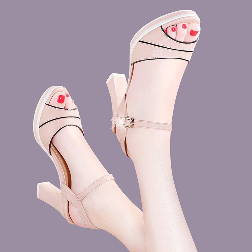 ZHIRONG Sommer-Sandelholze der Frauen arbeiten wasserdichte Plattform-Fisch-Mund-Schuhe Plattform-Fisch-Mund-Schuhe Plattform-Fisch-Mund-Schuhe um, die mit den einzelnen Schnallen-römischen hochhackigen Schuhen 8.5CM dick sind ( Farbe : Pink , größe : EU39/UK6/CN39 ) Pink 8acc1a