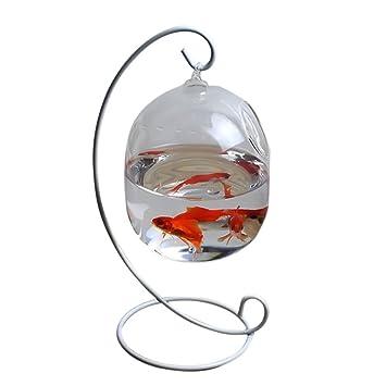 Mishiner Forma Ovalada acuarios Hang Acuario Vidrio Mini borosilicato Vidrio florero pecera hogar decoración
