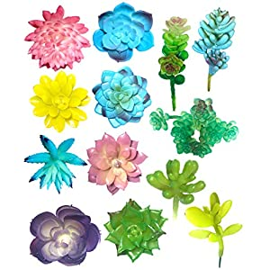 Lotus Theory 13-Pack Assorted Artificial Succulents Unpotted Textured Picks - Great Faux Floral Arrangement Bouquet Garden Wall Art Accent Bridal Wedding Shower 85