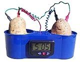 Potato Clock with No Mess Holder, Fruit Clock