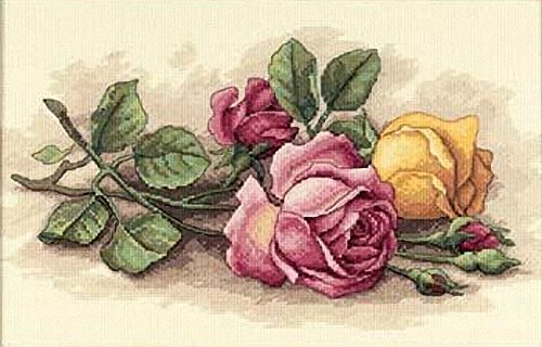 (Dimensions 'Rose Cuttings' Floral Counted Cross Stitch Kit, 14 Count Ivory Aida, 14'' x 9'')