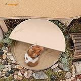 Niteangel Small Animal Sand-Bath Box - Acrylic