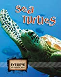 Sea Turtles, Cindy Rodriguez, 1606944053