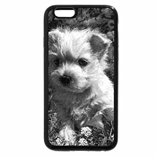 iPhone 6S Plus Case, iPhone 6 Plus Case (Black & White) - Anybody wants me