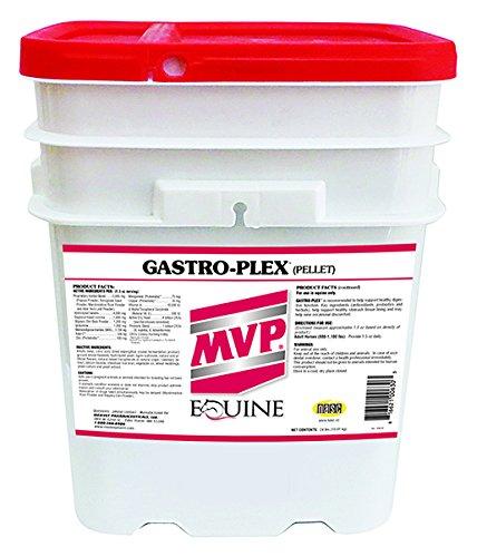 Gastro-Plex (24 lb) by Med-Vet Pharmaceuticals (Image #1)