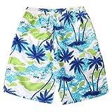 Mens Running Shorts,Willsa Elastic Waist Personality Painted Print Beach Shorts Blue
