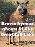 documentary salt of the earth - Brown hyenas ghosts Of The Great Salt Lake