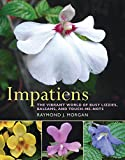Impatiens: The Vibrant World of Busy