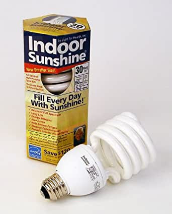 Indoor Sunshine: 10-pack of 30-watt Bulbs (Get ONE FREE with Purchase of 9!)