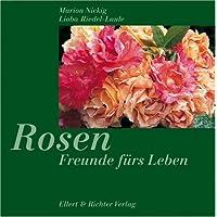 Rosen. Freunde fürs Leben