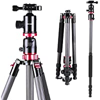 K&f Concept TC2534T Carbon Fiber DSLR Tripod 4 Section 66 Inch Portable Tripods with Load Capacity 17.63 Ibs Ball Head Quick Release Plate for Digital Camera DV