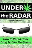 Under the Radar: How to Pass a Drug Test for