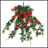 Windowbox 26in. Morning Glory Vine, Outdoor Rated - Red
