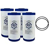 Whirlpool WHKF-GD25BB Aqua-Pure AP810, AP801 Compatible Filter Multi-Pack, KleenWater KW810EC Replacement Water Filter Cartridge, Set of 4, with 2 Whirlpool WHKF-DWHBB Compatible O-rings