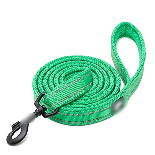 Love super store-sportinggoods Soft Dog Pet Leash in Harness and Collar Reflective Nylon Mesh Walking Training 11 Color 110cm TLL2111,Grass Green,XS