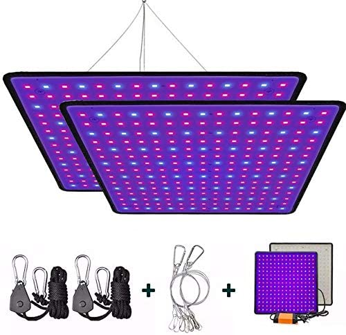 Plant Light T5 Red Blue 4 Packs Grow Lights with Auto Cycle Timer 3 6 12Hours 6500K Growing Lamp for Indoor Plants from Seeding to Harvest for Indoor Plants Hydroponics Greenhouse Seedling