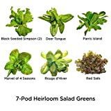 AeroGarden Heirloom Salad Greens Seed Pod Kit, 7