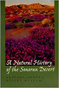 A natural history of the sonoran desert arizona sonora desert flip to back flip to front fandeluxe Image collections
