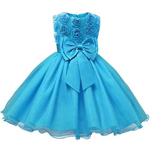 Niyage Girls Party Dress Princess Flowers Glitter Wedding Dresses Toddler Baby Pageant Tulle Tutus 18-24 M Blue]()