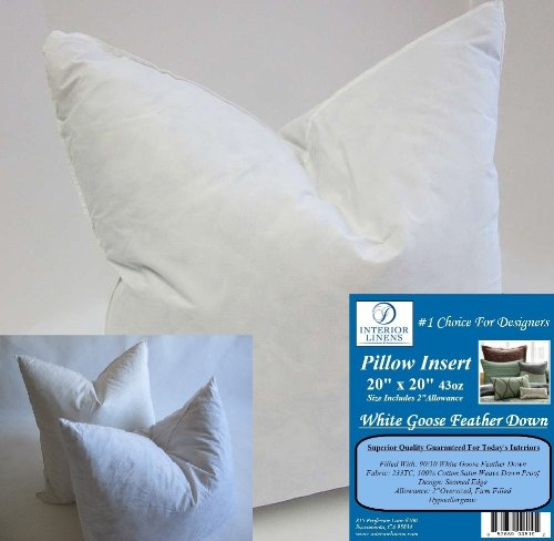 2 Pillow Inserts: 20