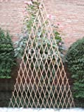 Master Garden Products Peeled Willow Fan Trellis, 24 by 60-Inch, Light Mahogany Color