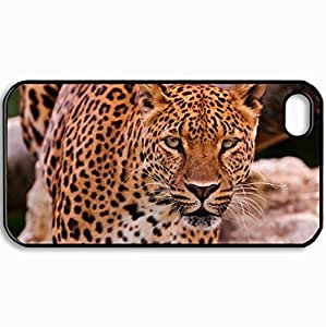 Personalized Protective Hardshell Back Hardcover For iPhone 4/4S, Cats Leopard Face Eye Predator 4x3 Cats Design In Black Case Color