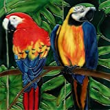 Continental Art Center BD-2028 8 by 8-Inch Two Parrots Ceramic Art Tile