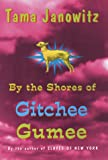 By the Shores of Gitchee Gumee, Tama Janowitz, 0517702983