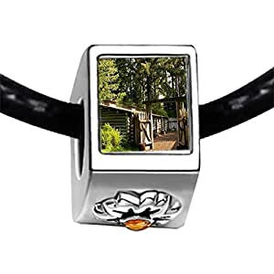 Chicforest Silver Plated The Door Of The Shade Photo Topaz Crystal November Birthstone Flower Charm Beads Photo Fits Pandora Charms