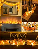 [2-Pack] Fall Decorations for Home Thanksgiving