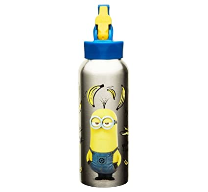 5906dba518 Amazon.com: Despicable Me Minions 25oz Stainless Steel Kids' Water ...