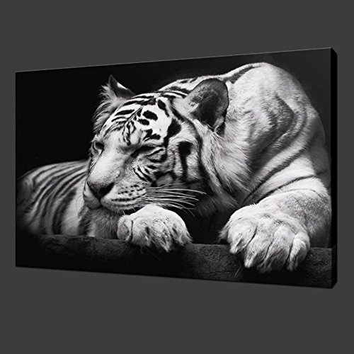 Wild Animals Wall (New Modern Wildlife Wall Painting Animal Black and White Tiger Poster Paint on Canvas Prints Home Decorative Art Picture (24x36inchx1pcs(60x90cmx1pcs)))