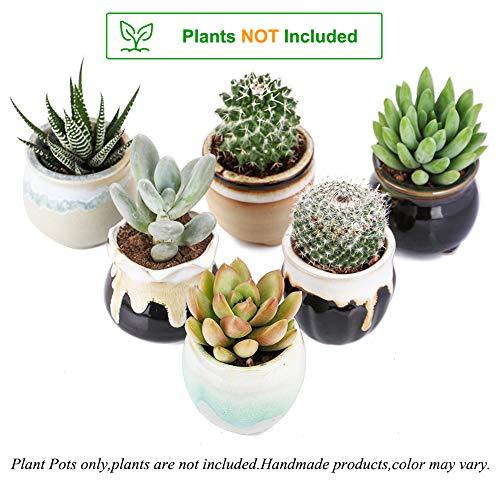 2.5 Inch Ceramic Planters,Flowing Glaze Succulent Planters Cactus Flower Plant Pot/Container Mini Succulent Plant Pots Black White Base Serial 6pcs in Set by Jomass (Image #2)