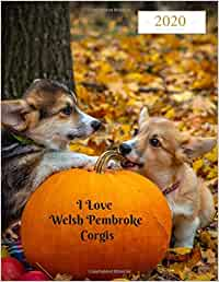 I Love Welsh Pembroke Corgis 2020 Weekly & Monthly Planner: Large Organizer Diary with Goal Setting and Gratitude Sections (Cute Dogs 8.5x11)