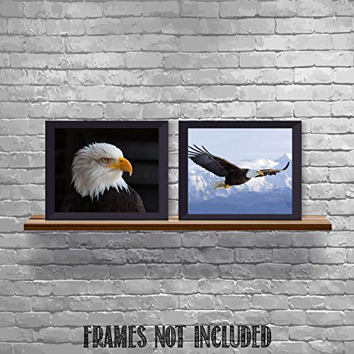 (American Eagle- 2 Print Set- 8 x 10's Wall Art- Ready to Frame- Home Décor, Office Décor & Wall Prints for Animal & Patriotic Theme Wall Decor. Majestic & Fearless Eagle Profile & Soaring in Flight.)