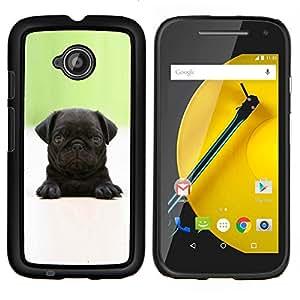 EJOOY---Cubierta de la caja de protección para la piel dura ** Motorola Moto E2 E2nd Gen ** --Bebé Pug Cachorro Negro minúsculo perro lindo