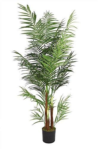 Laura Ashley 76 Inch Tall Areca Palm Tree by Laura Ashley (Image #1)