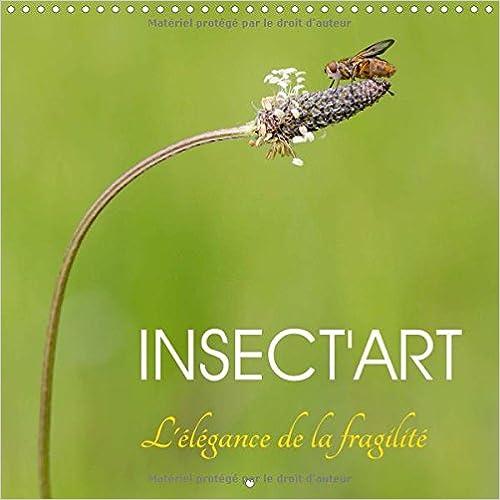 Lire un Insect'art : Avec Insect'Art, découvrez chaque mois la beauté unique d'un insecte dans son environnement naturel. Calendrier mural 2017 pdf