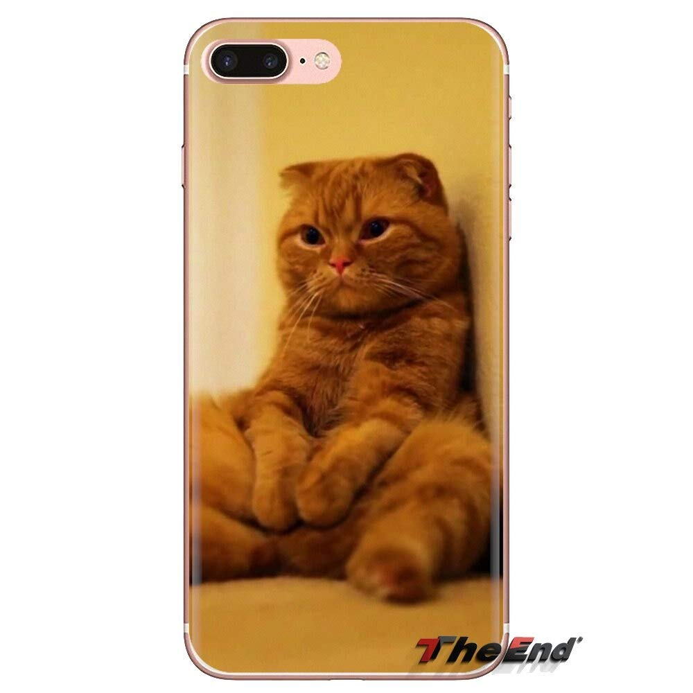 Inspired by Scottish Fold Phone Case Compatible WithIphone 7 XR 6s Plus 6 X 8 9 Cases XS Max ClearIphones Cases High Quality TPU Harness Stuffed Sac Shoes 33047259849 Pillow Necklace