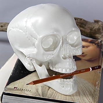 Earlywish Arts Crâne humain croquis Modèle médical réaliste ...