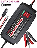 #10: BMK 12V 5A Smart Battery Charger Portable Battery Maintainer with Detachable Alligator/Rings/Clips Fast Charging Waterproof Trickle Charger for Car Boat Lawn Mower Marine Sealed Lead Acid Battery