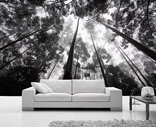 3D Wallpaper Forest Black and White Scenery is Beautiful Modern Wall Paper for Living Room Bedroom Tv Wall Decor-150Cmx105Cm ()