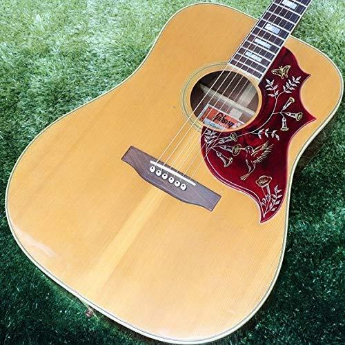 Gibson/Hummingbird 1973-1975 B07QVFMVKN