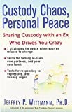 51SFYhHEXwL. SL160  Custody Chaos During Divorce: Sharing Custody with an Ex Who is Driving You Crazy